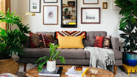 5 cây cảnh phong thủy nên có trong phòng khách, nội thất phòng khách, không gian xanh by Kiến trúc Doorway st ảnh tiêu biểu