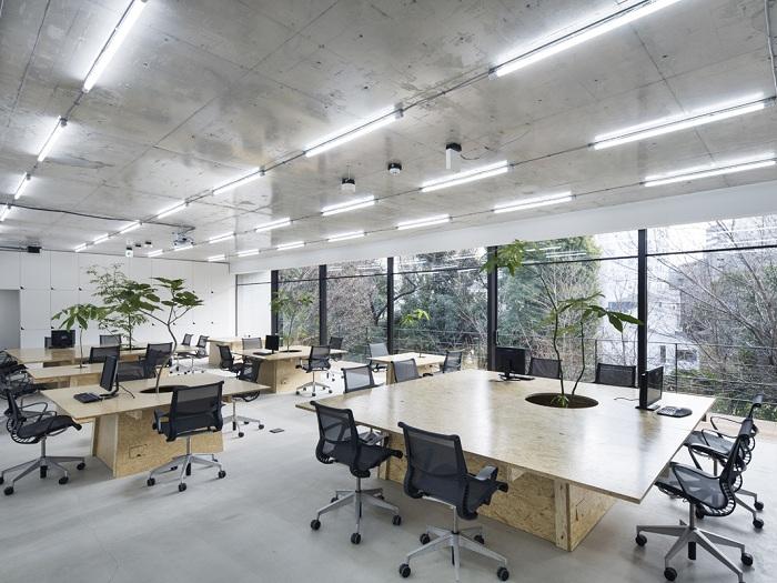 2-4 tiêu chí để thiết kế nội thất văn phòng phong cách tối giản